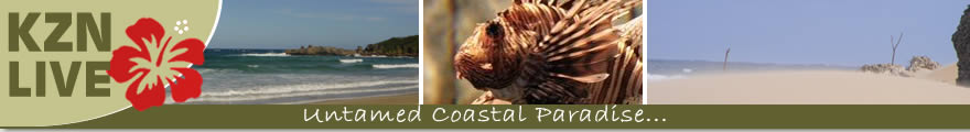 Elephant Coast Accommodation | Accommodation Elephant Coast