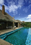 Relax around the pool at Leadwood Lodge, Tala Private Game Reserve